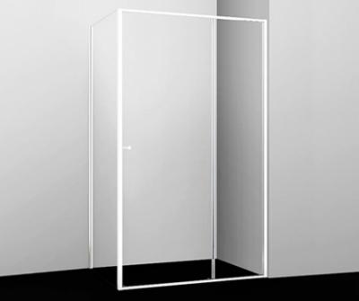 Душевой уголок WasserKRAFT Rhin 44S16, прямоугольный, 110 х 100 см